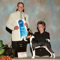 Heart of America Kennel Club - Group Photo Gallery